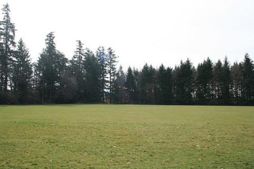 Woodbury Domain